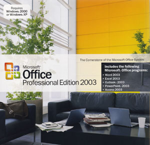 ���� 2003 ���� Microsoft Office 2003 Professional Edition ������ ����